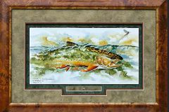 artist-series-david-ruimveld-brook-trout-sipping-mayflies