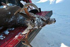 north-maine-deer-hunting-Skylar9pt2018Buck