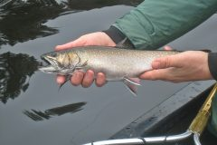 maine-fly-fishing-brook-trout-20190121-018