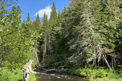 maine-fly-fishing-wild-brook-trout-sporting-camp20210906-170000