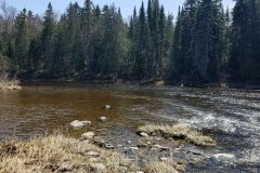north-maine-fly-fishing-native-wild-brook-trout-salmon1