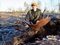 Maine Moose Hunting