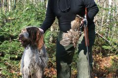 north-maine-grouse-woodcock-hunting_007-20200118