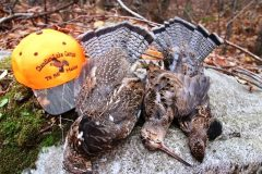 north-maine-grouse-woodcock-hunting_047-20200118