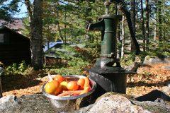 maine-sporting-camp-food-chandler-lake-camps-veggie
