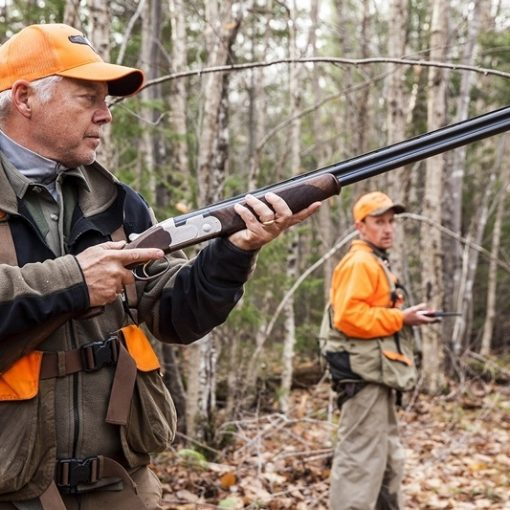 North Maine Woods Grouse Hunting