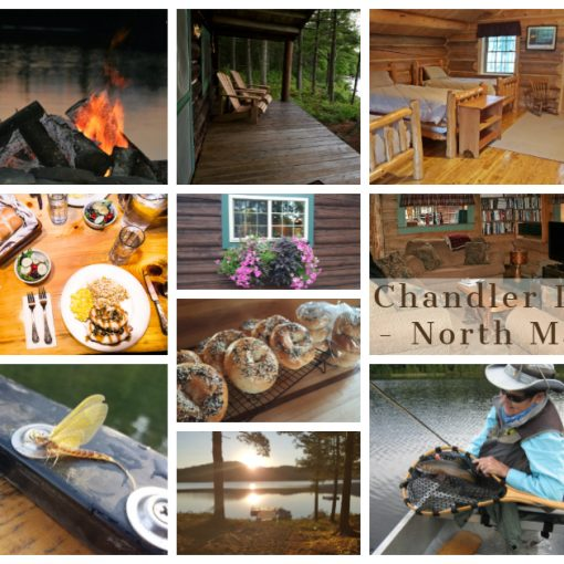 Chandler Lake Camps and Lodge North Maine Woods Native Wild Brook Trout and Land Locked Salmon